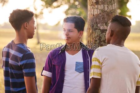 teenagers in park boy smoking electronic