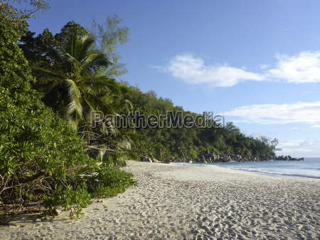 beach of anse georgette seychelles