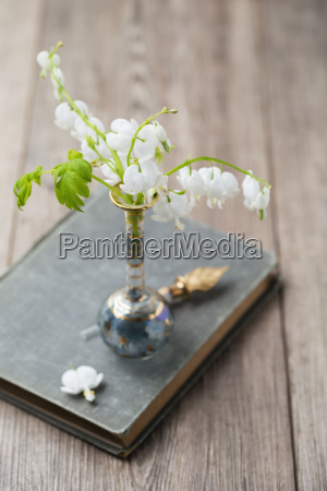white lyre flowers in a vase