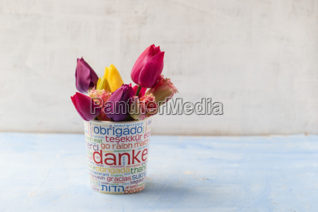 different tulips in a printed cup
