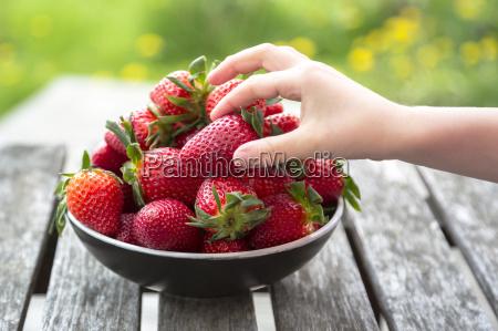 girls hand taking strawberry
