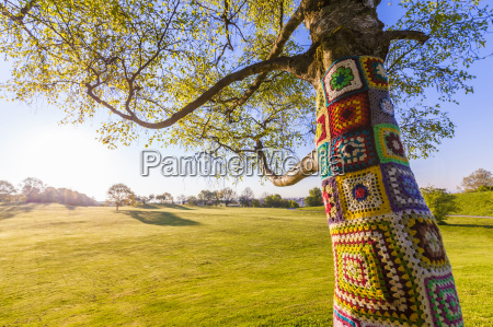 tree trunk covered with crochet