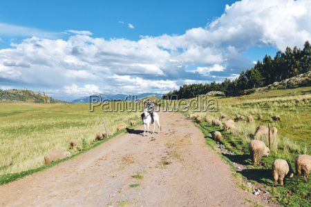 peru cusco man riding horse on