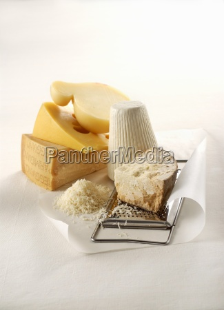 various types of cheese with a