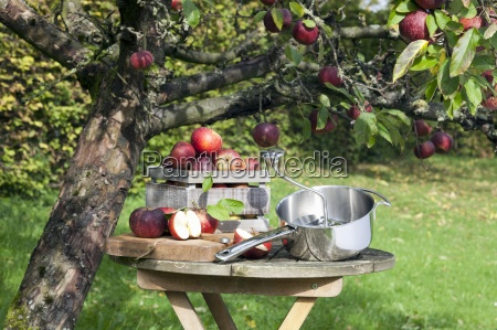 freshly harvested apples and a food