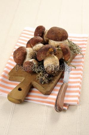 fresh porcini mushrooms on a chopping