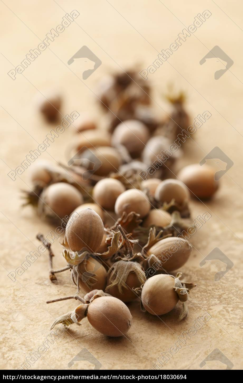whole, hazelnuts - 18030694