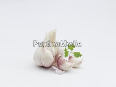 garlic bulb with garlic cloves