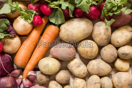 vegetables and root vegetables in a
