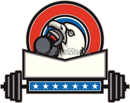 bald eagle lifting kettleball barbell circle