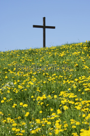 meadow with dandelion and cross