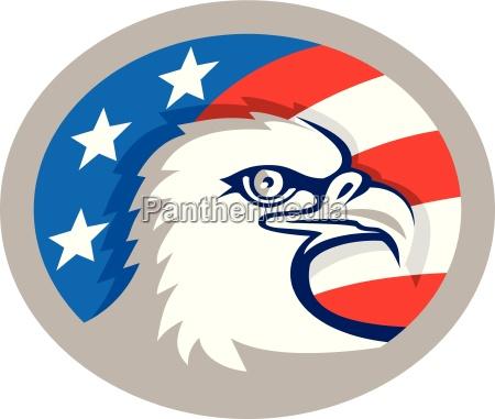 bald eagle head usa flag oval