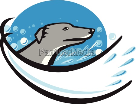 greyhound dog head water bubble oval
