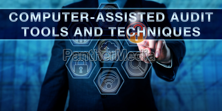 computer assisted audit tools and techniques