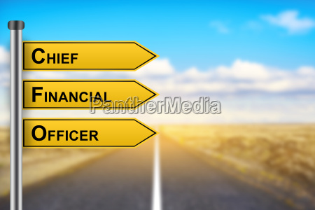 cfo or chief financial officer words