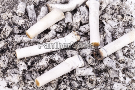 cigarette butts and ash close up