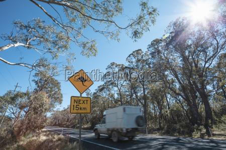 kangaroo warning roadsign new south wales