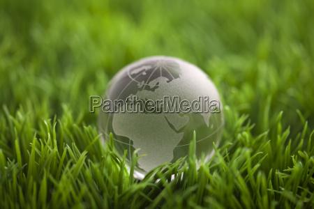 crystal globe on green grass world