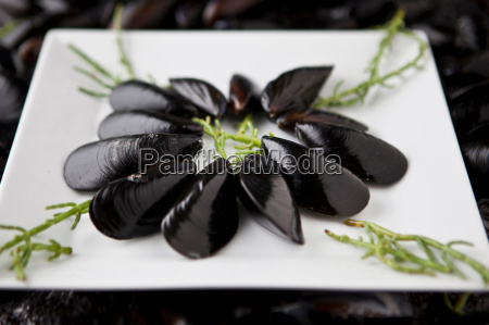plate of mediterranean mussels