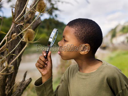 boy investigating nature