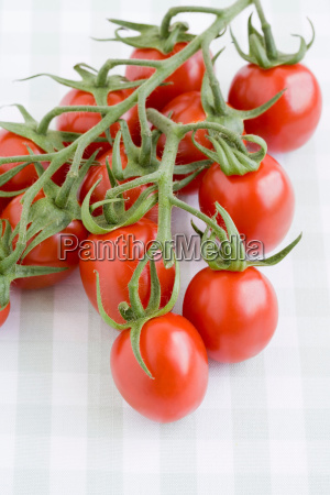 close up of cherry tomatoes on