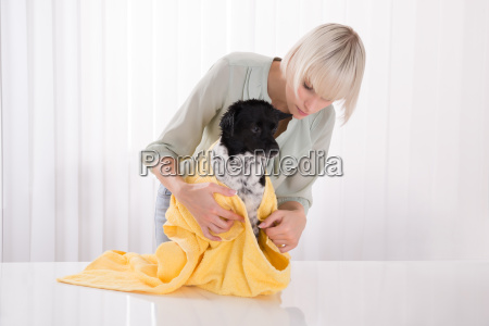 woman drying her dog with towel