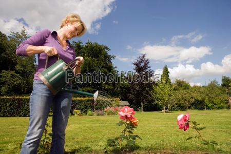 women watering roses