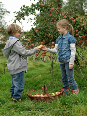 girl and boy holding apples with