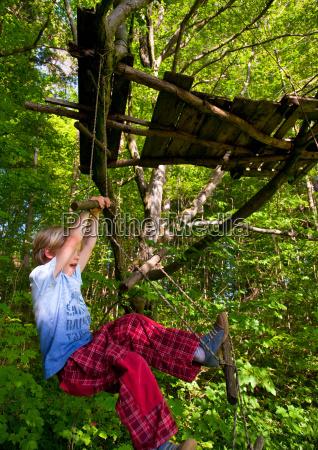 boy climbing rope ladder in tree