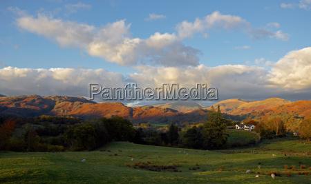 grassy field in valley