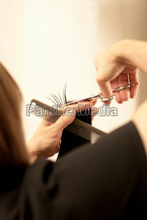 hair stylist cutting clients hair