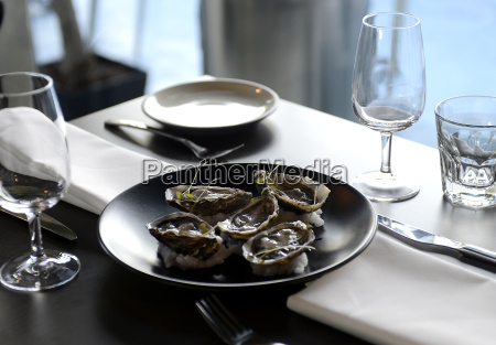 still life gourmet food of oysters