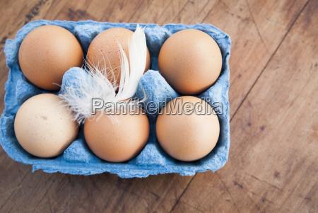still life of six brown eggs
