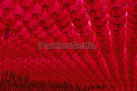 lanterns in honour of buddhas birthday