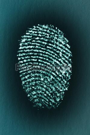 fingerprint of a males index finger