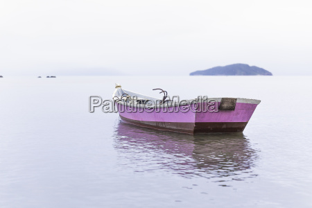 anchored pink rowing boat manguinhos buzios