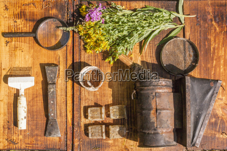 overhead still life of wildflowers and