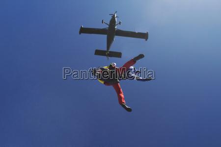 freeflying skydivers in blue sky