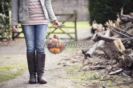 cropped shot of woman holding basket