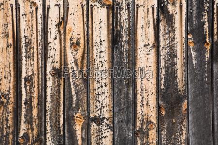 paint peeling off wood close up