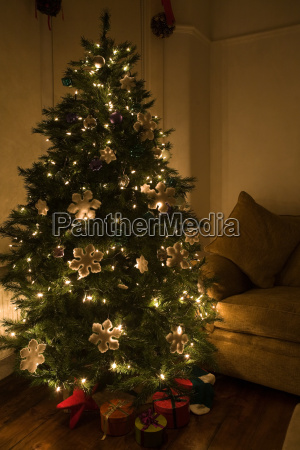 a christmas tree in a living