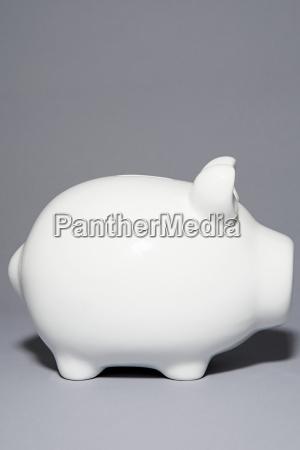 white piggybank