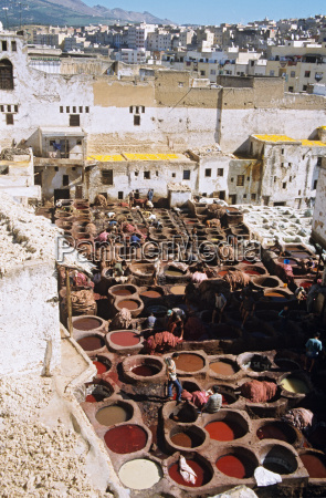 leather dying vats in fes