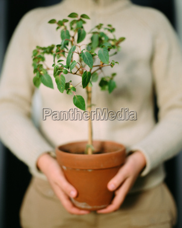 woman holding a plant pot