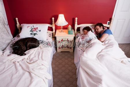 young couple sharing single bed dog