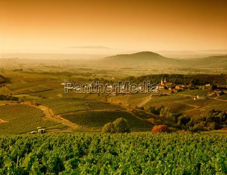 rural landscape between vinzelles and saint