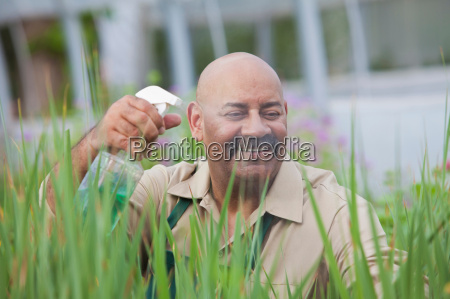 mature man using insecticide on plants