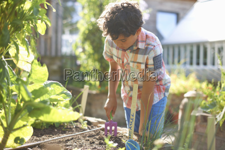 boy digging raised plant bed in