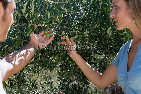 couple looking at olives