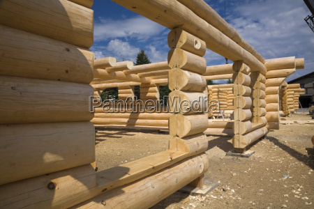 unfinished scandinavian eastern white pine log